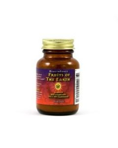 Healthforce - Fruits of the earth 180gr poeder