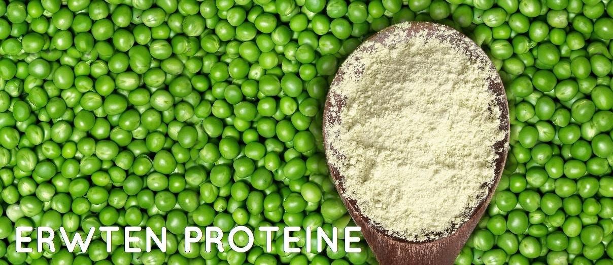 erwten proteine