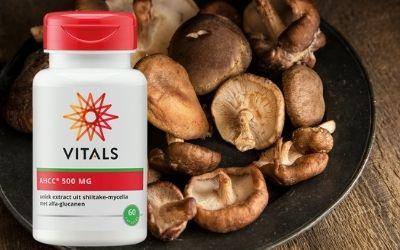 NIEUW: Vitals AHCC, extract uit shiitake mycelia met alfa-glucanen