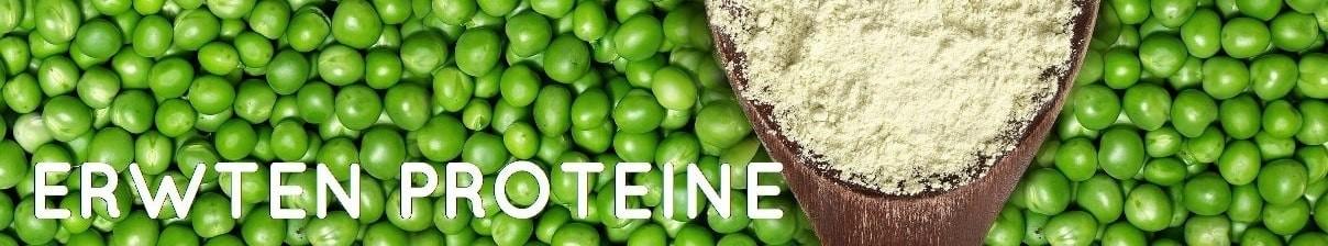 erwten eiwitten