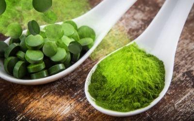 Chlorella - Een superfood dat de wereldbevolking kan voeden?